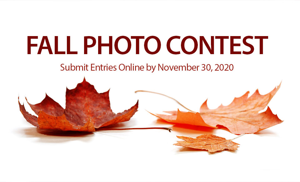 Learn about our photo contest and how you can enter
